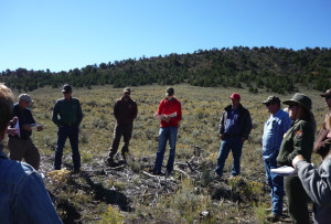 Members of working groups from Utah and Colorado meet together to observe habitat conditions after removal of conifers near sage-grouse habitat